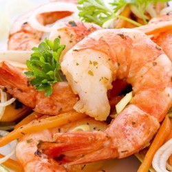 The Nautilus Open Daily for Lunch & Dinner- Blue Water