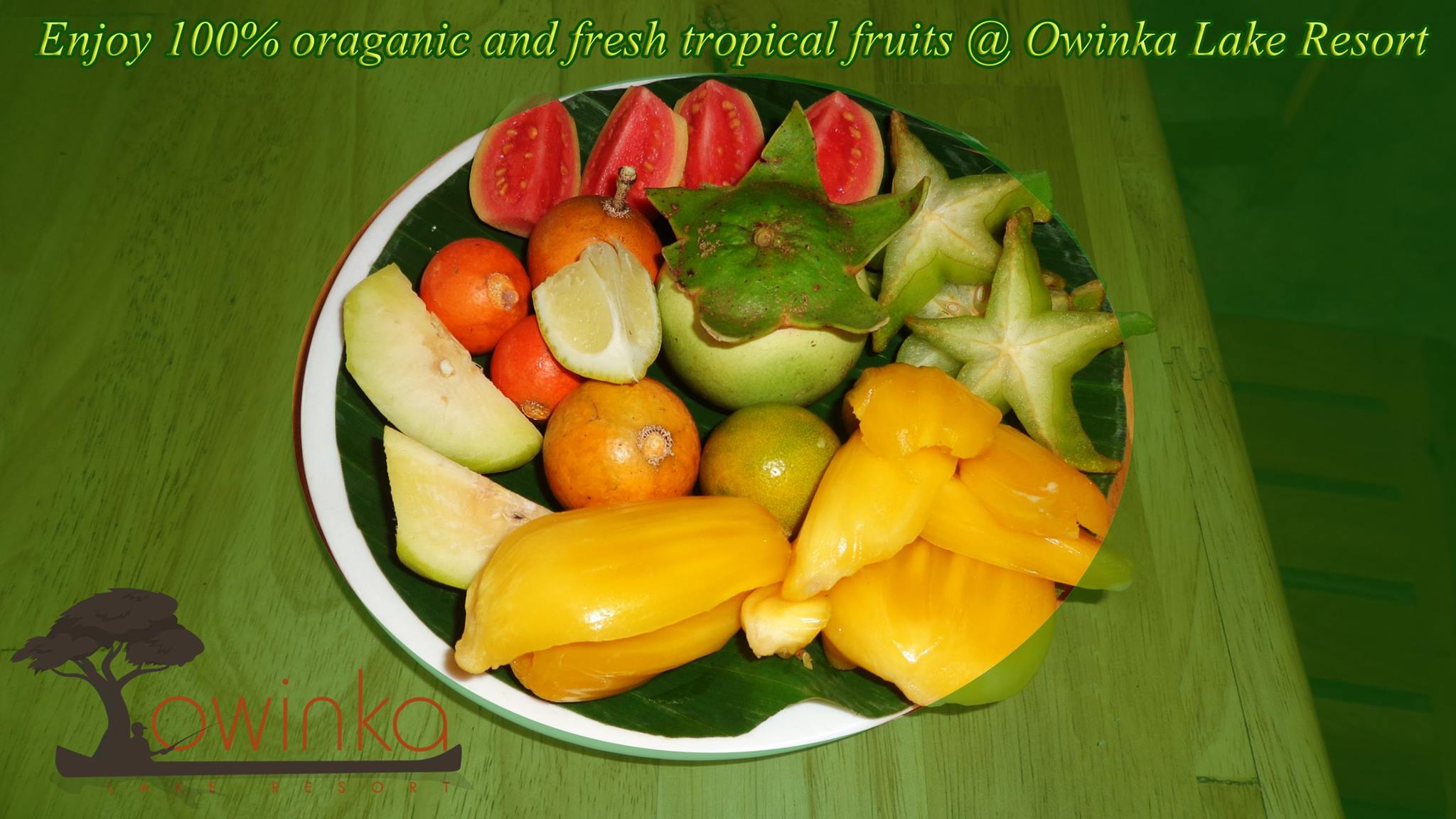 Owinka Lake Resort _Natural Fruits